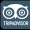 TripAdvisor Feed
