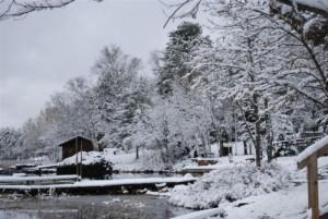 snow pics 2010 006